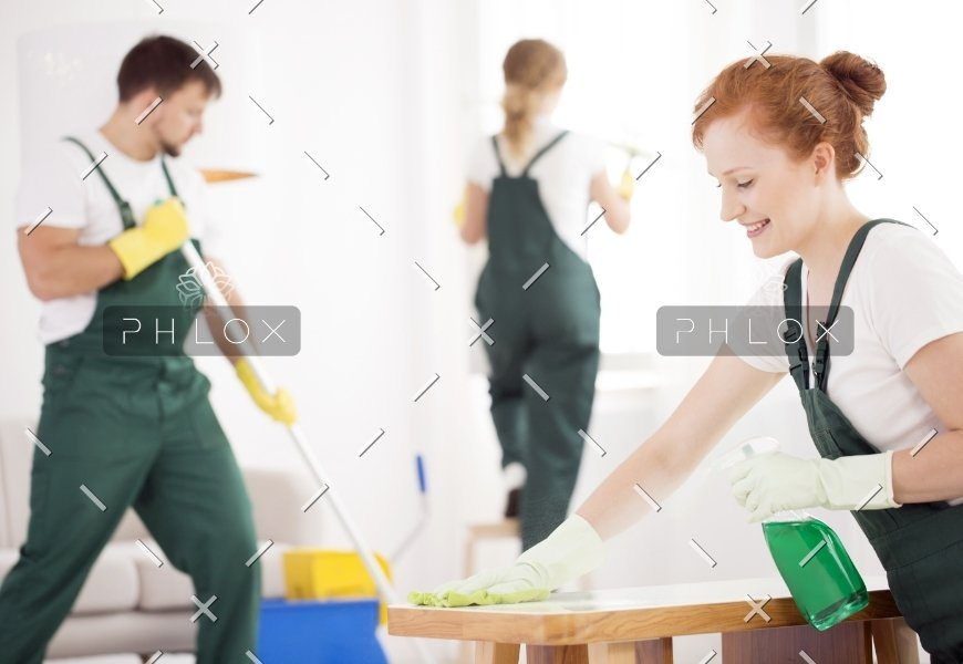 demo-attachment-46-cleaning-service-during-work-PPTAZG5